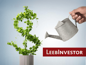leebinvestor_preview.png